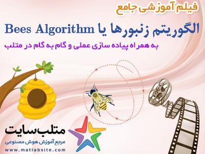 فیلم آموزشی جامع الگوریتم زنبورها یا Bees Algorithm در متلب (به زبان فارسی)