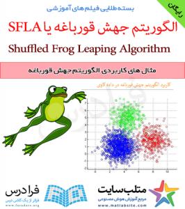 فیلم آموزشی رایگان مثال های کاربردی الگوریتم جهش قورباغه (به زبان فارسی)